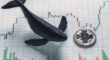 Bitcoin Whales Buy Low, Sell High; Retail Investors Chase Rallies